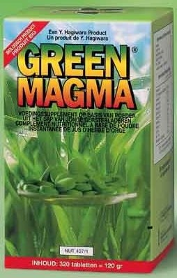 Green Magma 320 Tabletten | Welzijn